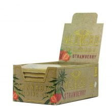 CBD Strawberry chewing gum brown THC free (24pcs/display)