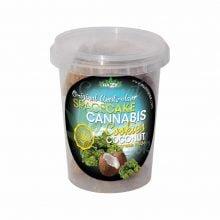 Cannabis Cookies Box Coconut Flavour THC Free 150g (24box/display)